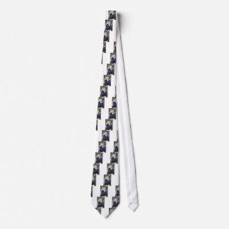 beautiful tie