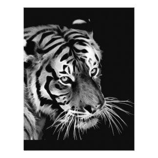Beautiful Tiger Black White Africa Letterhead