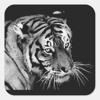 Beautiful Tiger Black White Africa Square Sticker