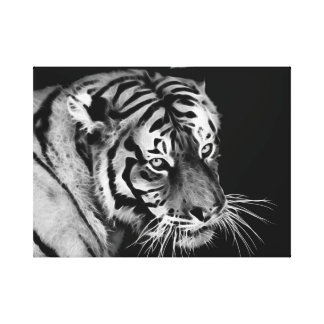 Beautiful Tiger in Black and white Canvas Print