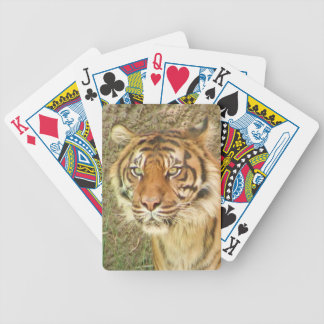 Beautiful Tiger Playing Cards! Bicycle Playing Cards