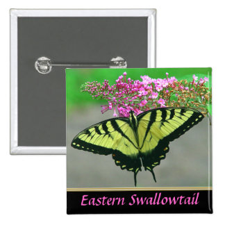 Beautiful Tiger Swallowtail Butterfly Button 4