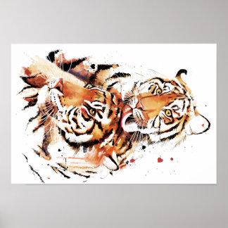 Beautiful tigers, big cats poster