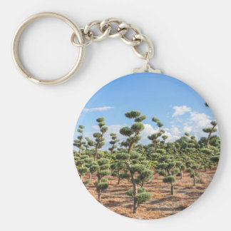 Beautiful topiary shapes in conifers keychain
