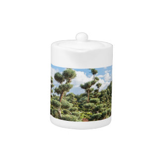 Beautiful topiary shapes in conifers teapot