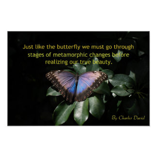 Beautiful Transformation Poster