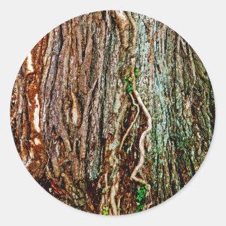Beautiful Tree Bark Texture Classic Round Sticker