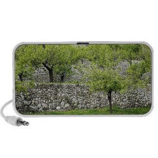 Beautiful tree landscape speakers