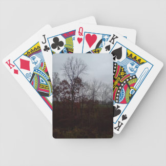 Beautiful trees of late fall bicycle playing cards