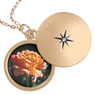 Beautiful Tri-color Rose, Gold Finish Locket