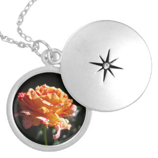 Beautiful Tri-color Rose, Silver Plated Locket
