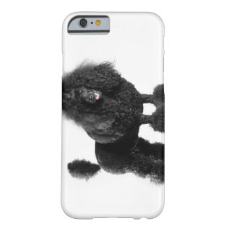 Beautiful, trimmed, black, complete poodle body barely there iPhone 6 case