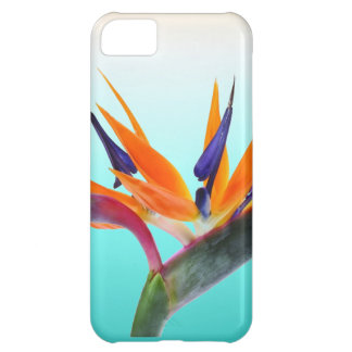 Beautiful Tropical Bird of Paradise Flower Cover For iPhone 5C
