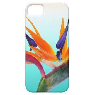 Beautiful Tropical Bird of Paradise Flower iPhone SE/5/5s Case