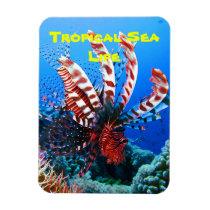Beautiful Tropical Lionfish Magnet