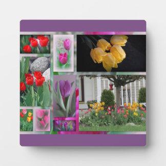 Beautiful Tulips Collage Plaque