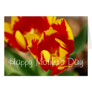 Beautiful Tulips Happy Mother Day Card