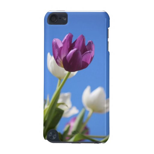 Beautiful Tulips iPod Touch (5th Generation) Cover