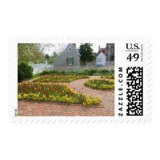 beautiful tulips postage