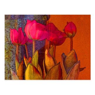 Beautiful Tulips Postcard