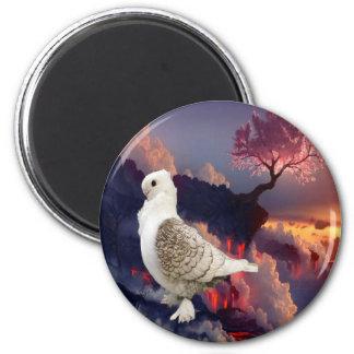 Beautiful Turbit Pigeon Magnet