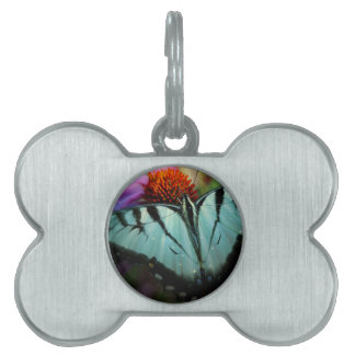Beautiful Turquoise Swallowtail Butterfly Pet ID Tag