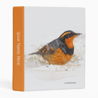 Beautiful Varied Thrush on a Snowy Winter's Day Mini Binder