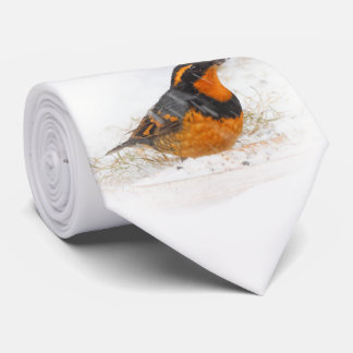 Beautiful Varied Thrush on a Snowy Winter's Day Neck Tie