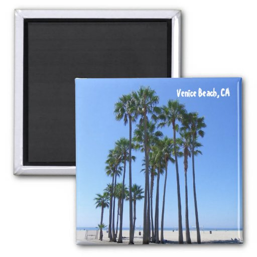 Beautiful Venice Beach Magnet! 2 Inch Square Magnet