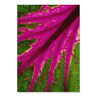 Beautiful Very red and green leaf pattern of cabba Custom Invitations