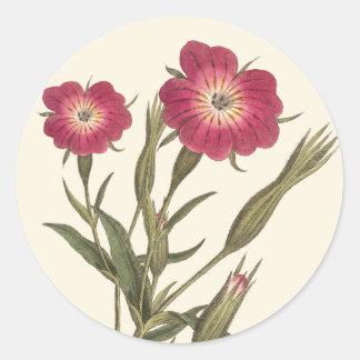 Beautiful Vintage Field Flowers Antique Botanical Classic Round Sticker