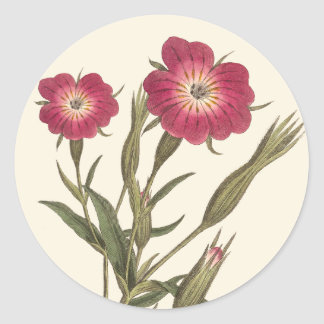 Beautiful Vintage Field Flowers Antique Botanical Classic Round Sticker