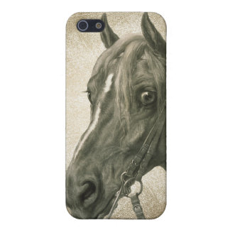 Beautiful Vintage Horse Art Covers For iPhone 5