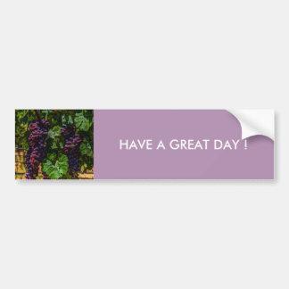 Beautiful vintaget grapes on the vine. bumper sticker