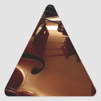Beautiful Violin for the Musical Strings lover Triangle Sticker