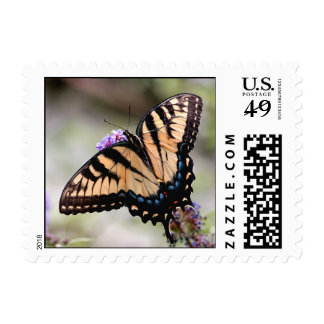 Beautiful Virginia Swallow Tail Butterfly Stamp