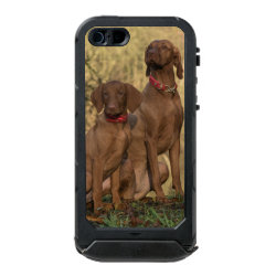 Incipio Feather Shine iPhone 5/5s Case with Vizsla Phone Cases design