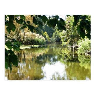 Beautiful water scene postcards