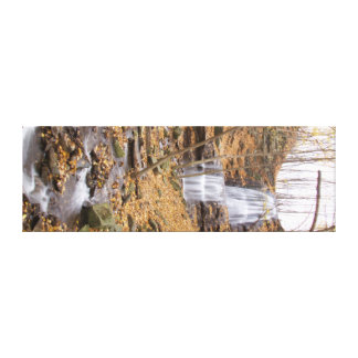 Beautiful waterfall! canvas print