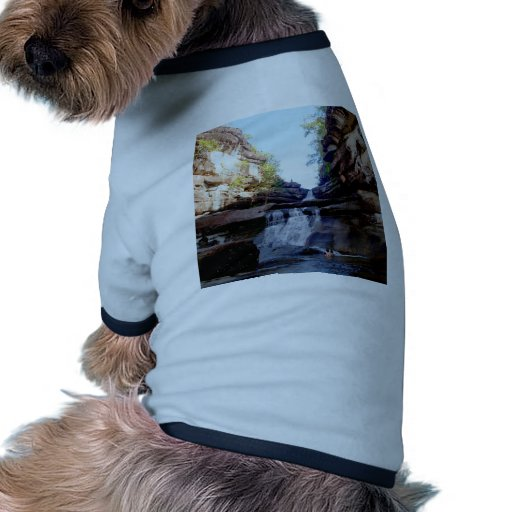 Beautiful  waterfall dog clothes