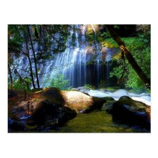 Beautiful Waterfall Jungle Landscape Postcard