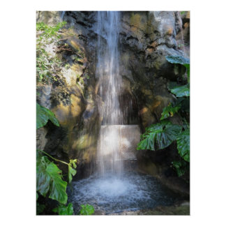 Beautiful Waterfalls In Rain Forest Poster