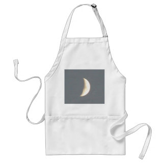 Beautiful Waxing Crescent Moon at Dusk Apron