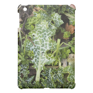 Beautiful Weeds Cover For The iPad Mini