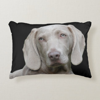 Beautiful Weimaraner Hunting Dog Accent Pillow