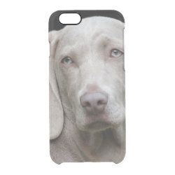 Uncommon iPhone 6 Clearly™ Deflector Case with Weimaraner Phone Cases design