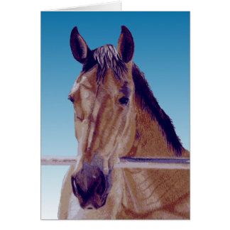 Beautiful Western Horse Card