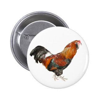Beautiful Wheaten Ameraucana Chickens Button