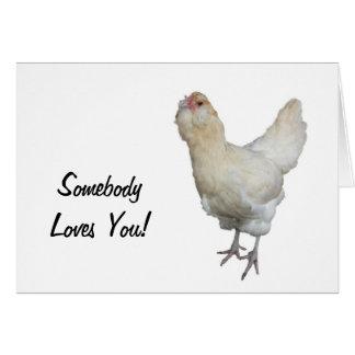 Beautiful Wheaten Ameraucana Chickens Card