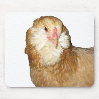 Beautiful Wheaten Ameraucana Chickens Mouse Pad